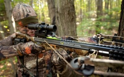What Are The Two Most Common Types Of Crossbows?