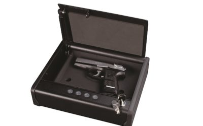 What Are The Best Gun Safes Under $500?