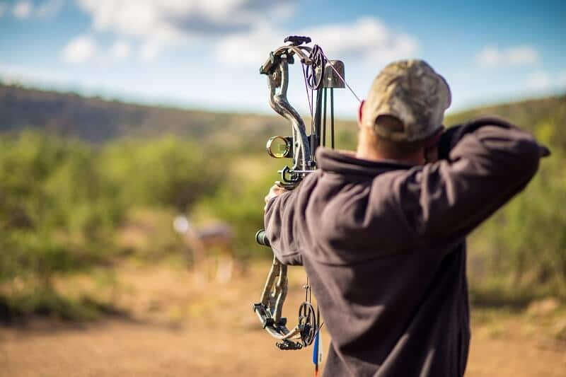 The Ultimate List of 25 Bow Hunting Tips For Beginners & Professionals