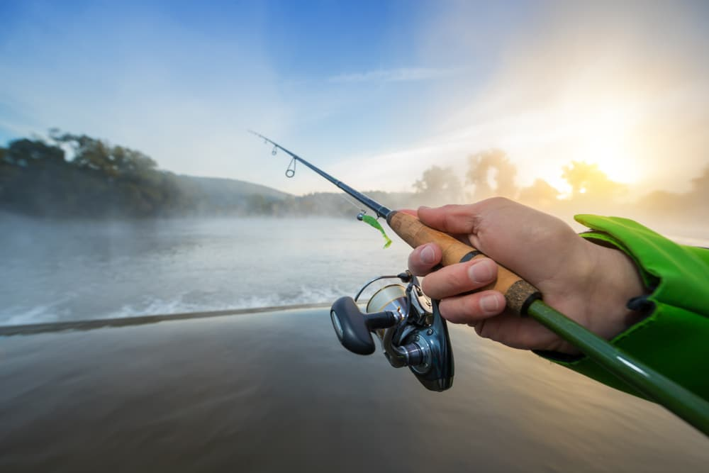Time to Boost Your Angling Game: Here Are the 10 Best Ultralight Spinning Reels
